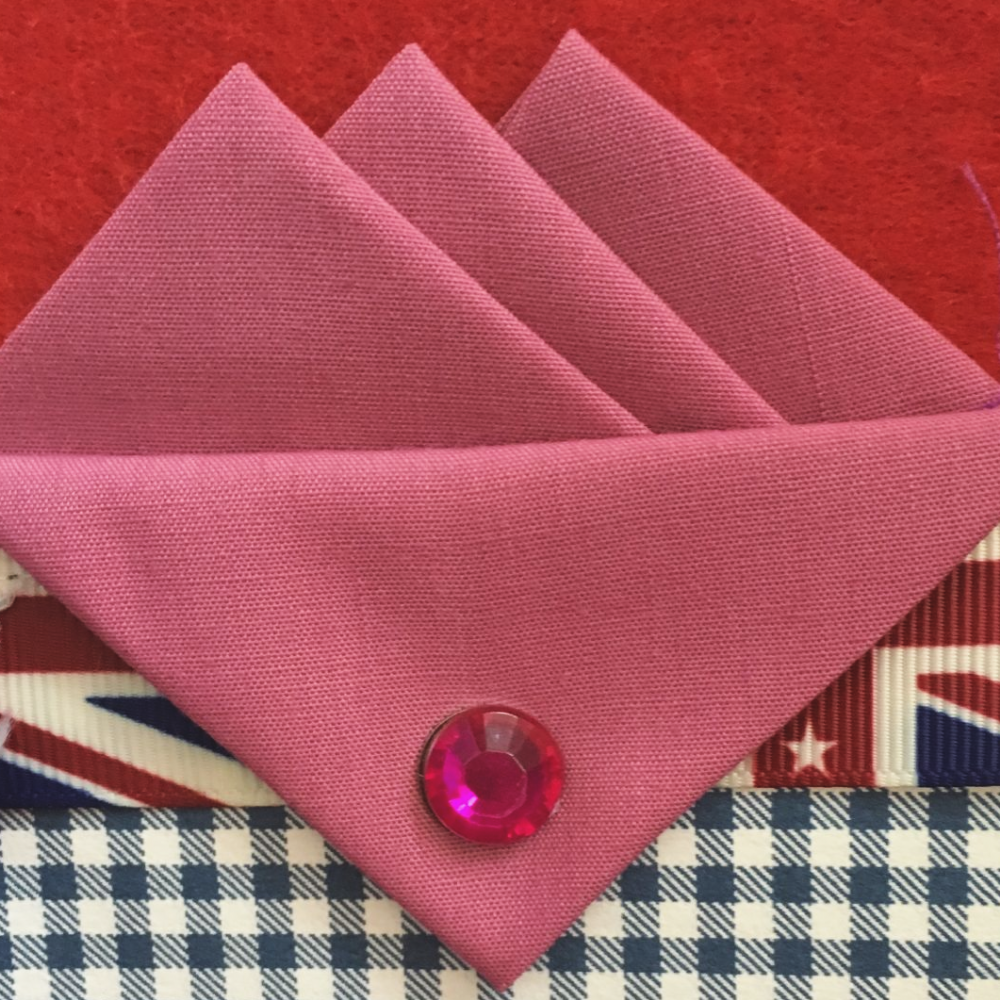 Pink Three Point Pocket Hankie & Pin